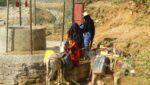 مخيمات نازحين في اليمن