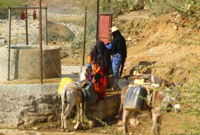 العمل الإنساني في اليمن.. حضور نسائي رغم المعوقات!