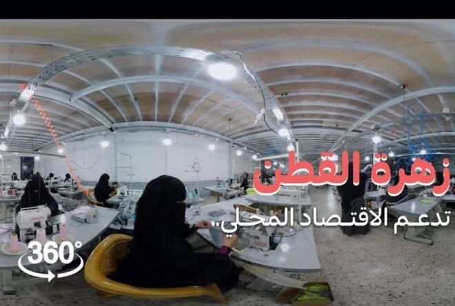 «زهرة قطن» تدعم الاقتصاد المحلي | فيديو بتقنية 360