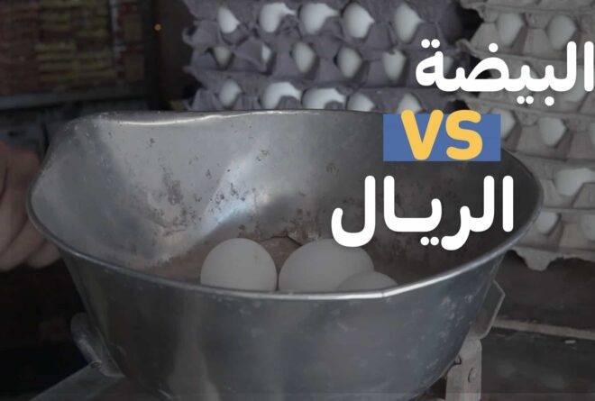 فيديو | البيضة VS الريال