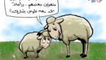 أضحية العيد