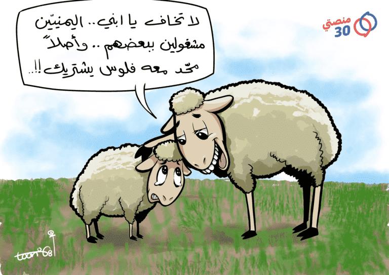 أضحية العيد اليمن الحرب