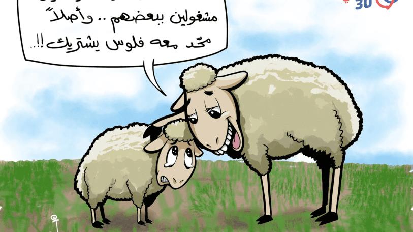 كاريكاتير | أضحية العيد في اليمن اليوم!