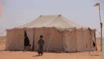طفل من أسرة نازحة في مخيم بحضرموت