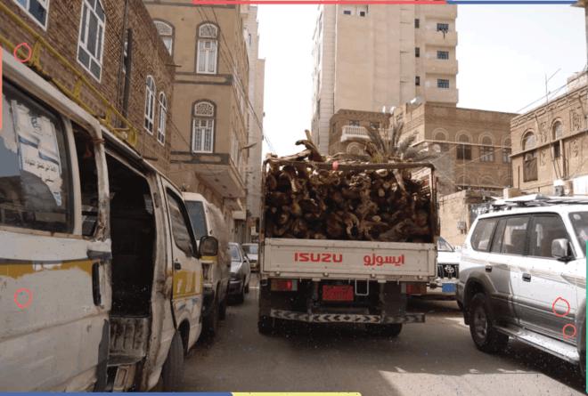 أزمة الغاز المنزلي تفاقم الاحتطاب الجائر في اليمن